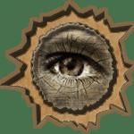 Orman Gözü